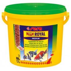 KOI Royal Medium - 3800 ml
