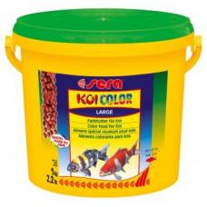 KOI Color Large - 3800 ml