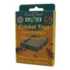 Cricket Traps - 10st