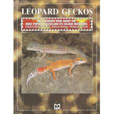 Leopard Geckos - 80 sidor
