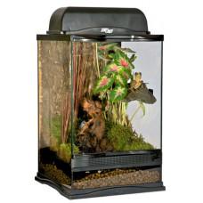 Naturalistic Terrarium - 45x45x45cm